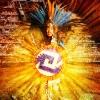 solar shield- dance